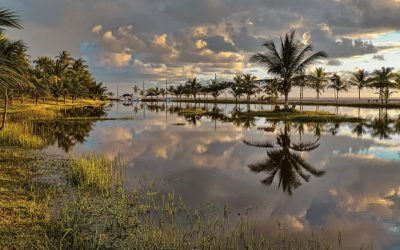 Conheça a Bahia e as belezas que este estado oferece