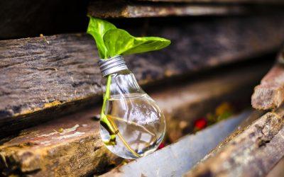 Como agir de uma forma mais sustentável!