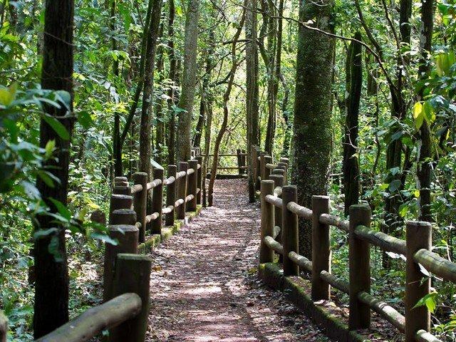 Por que Visitar Parques Ecológicos?