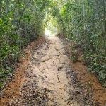 TREKKING: Trilha Arraial Escondido